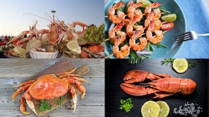 Huit fruits de mer et leurs bienfaits santé