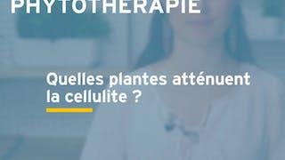 Quelles plantes pour atténuer la cellulite ? Réponse en vidéo